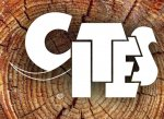cites-rosewood-ban-lifted.jpg